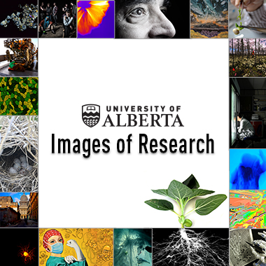 images of research logo