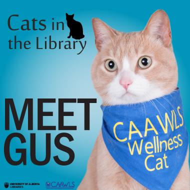 Meet Gus