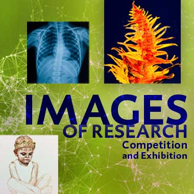 vote for image of research